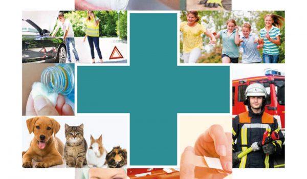 Kategorie-pharma